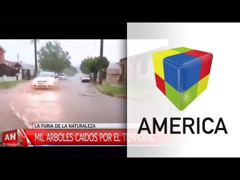 Rosario: autos aplastados por árboles y barrios inundados tras el temporal