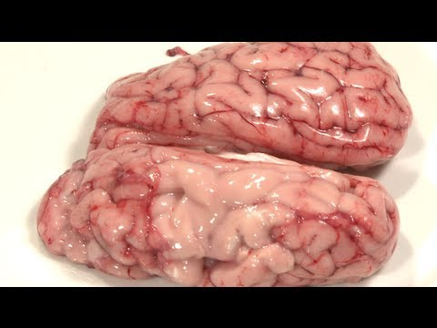 how to cook brains and eggs