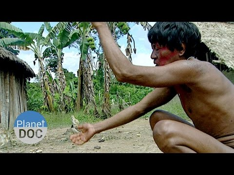 Spirits of the Jungle. The Mountain of Mystery | Tribes - Planet Doc Full Documentaries