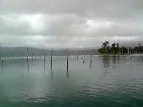 Travel to suriname? (How to travel in suriname) - Kuana island