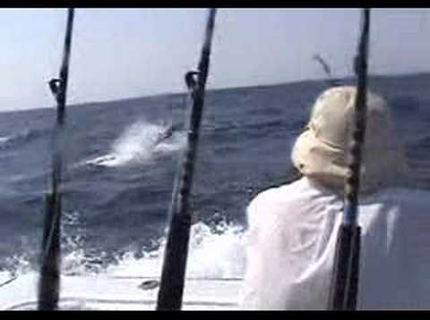 Tom Hand - Pacific Fins - SLOW MOTION - Marlin Guatemala