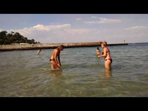 Ютуб видео секс на диком на пляже то