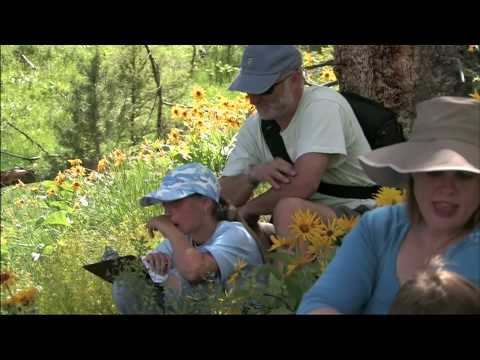 Yellowstone for Families Web Promo - National Park