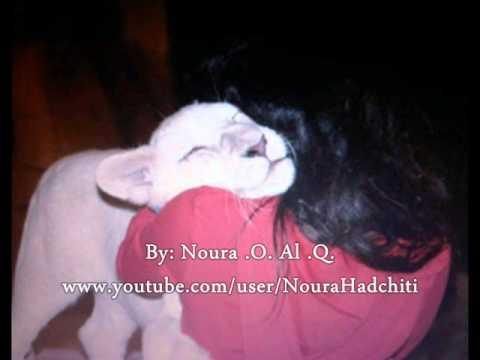 ا�ش�خة �ر�� ب�ت �ح�د ب� راشد آ� ��ت�� MMM Maryam Bint Mohammed Bin Rashid Al Maktoum.