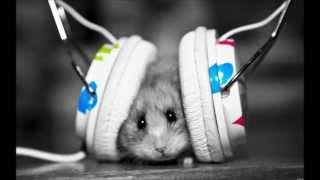 I Like it Loud (Dubstep Remix *1080p*)