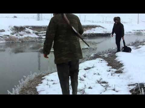Hasan ARABACIOĞLU ördek avı 2 de 2 (duck hunting)