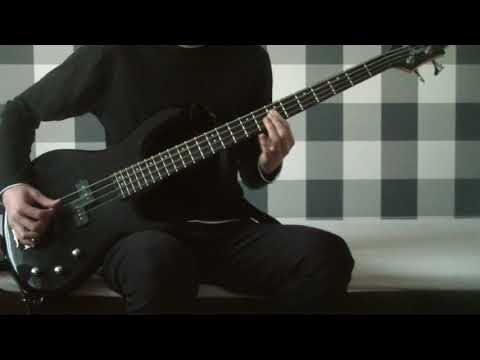 My Hair is Bad - 運命 (bass cover)
