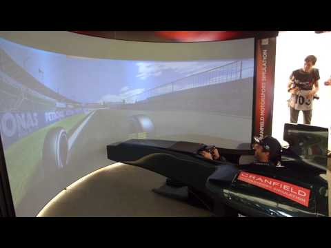 Daniel Ricciardo spins out then sets fastest lap in F1 Simulator