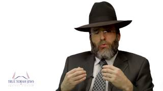 Video: Zionism does not represent Jewish people. Netanyahu is not our Leader - Yaakov Shapiro
