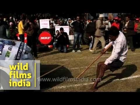 Polio-stricken man pulls car with his teeth : Rural Indian entertainment!
