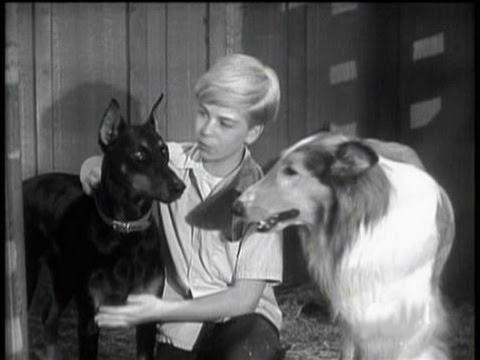 Lassie -  Episode #62 -