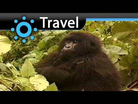 The Virunga National Park Travel Video Guide