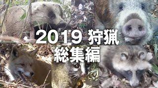 【狩猟】2019年狩猟番組 総集編