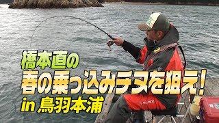 橋本直 春の乗っ込みチヌを狙う!in鳥羽本浦