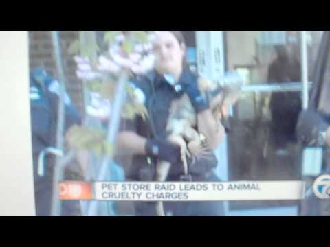 GREENWOOD PETS: Owner of Warren pet store is charged with animal cruelty (Video #1)