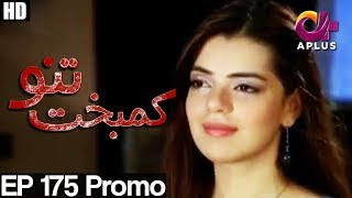 Kambakht Tanno - Episode 175 Promo | A Plus ᴴᴰ Drama | Shabbir Jaan, Tanvir Jamal, Sadaf Ashaan