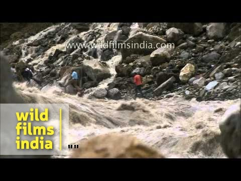 Worst of the Uttarakhand floods: a compilation of frightening...