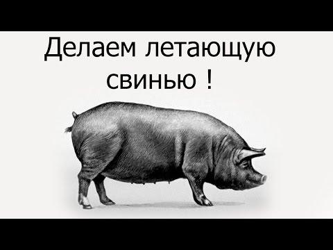 Делаем летающую свинью !