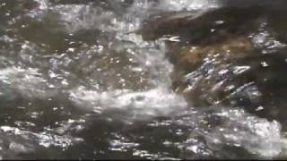 Rescuing The River:  The Raritan - Promo 1