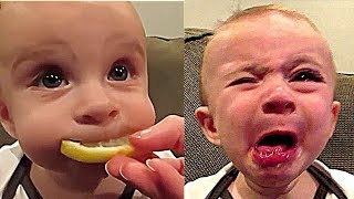 Funny and cute #babies trying lemon first time | funny #kids face | funny vines compilation
