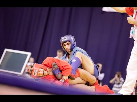 SAMBO IS LARGER THAN LIFE \ 2013 \ HIGHLIGHTS \