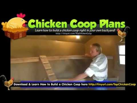 How to Build a Chicken Run Plan How to Build a Chicken Run