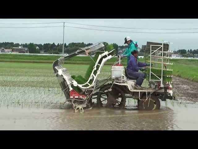 Kỹ thuật canh tác nông nghiệp hiện đại tại Nhật Bản (Máy cấy lúa Nhật Bản)