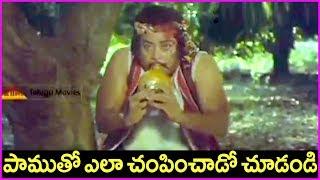 Punnami Nagu Telugu Movie Scene | Chiranjeevi | Rati Agnihotri | Super Hit Telugu Movie