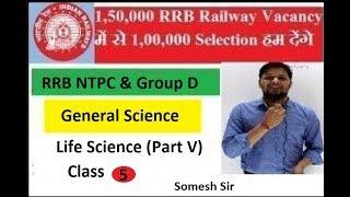RRB NTPC 2019   RRC Group D 2019   General Science   Life Science (Part V) Class 5 EduWiseGuru