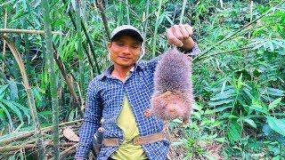 Dúi Rừng Ăn Với Cơm Lam Tại Rừng Già | Hương Sơn Green
