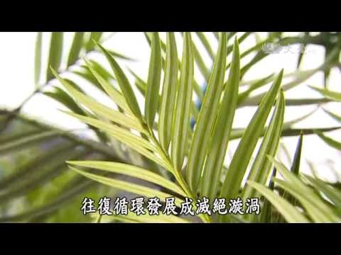 大愛-發現-20150418 冰河孑遺啓示錄