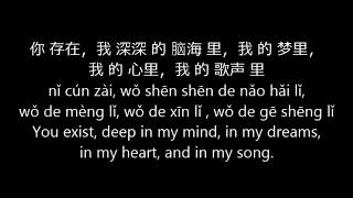 Wanting 曲婉婷 - 我的歌声里 Wo De Ge Sheng Li (You Exist In My Song) Lyrics Pinyin English Translation