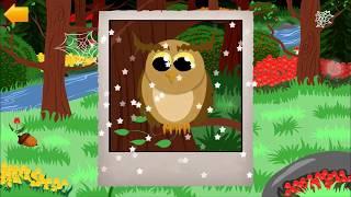 đổi bắt động vật trong rừng ! trò chơi hoạt hình cho bé