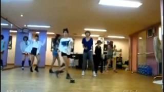 download lagu T-ara - Roly Poly Dance Practice Mirrored gratis