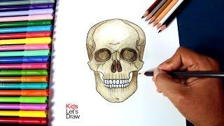 Cómo dibujar una Calavera paso a paso | How to draw a Skull