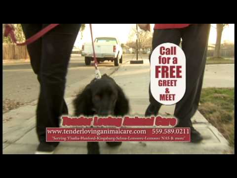 Tender Loving Animal Care - 2-spots - REVISED graphics