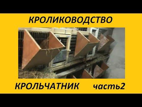 МОЙ КРОЛЬЧАТНИК часть 2