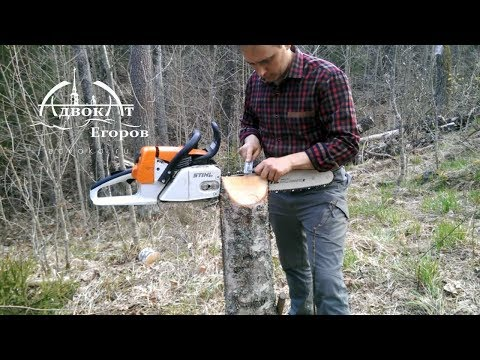 Лесные Тиски из пня. Заточка пилы    DIY |  Vices for woodcutter