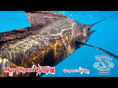 Mar 1 Sport Fishing January 17 2013-1