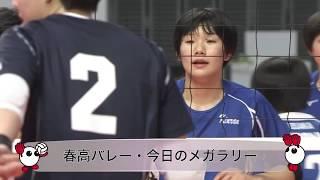 きょうのメガラリー・1月7日(月) 女子準々決勝 金蘭会(大阪)vs就実(岡山)