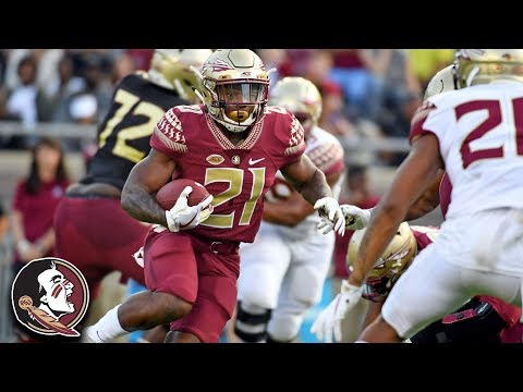 Florida State Spring Football Game Highlights (2018)