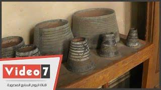 """بالفيديو.. الإهمال بـ""""المتحف الزراعى"""" يهدد النباتات المصرية النادرة"""