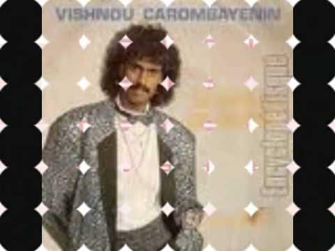 Vishnou Sega Mauritius Dj Shaheel video