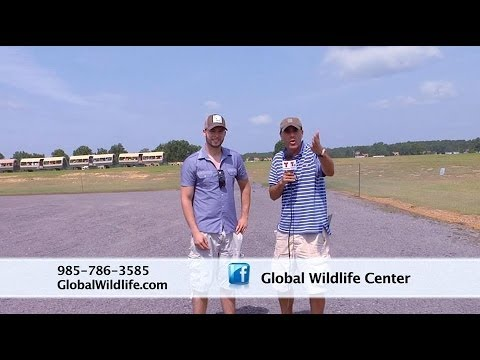 Global Wildlife Center Best Tour Que Pasa New Orleans Telemundo