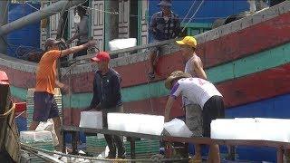 Nan giải bài toán thiếu lao động trên biển   Tin Tức 24H