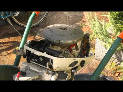 Johnson Evinrude 15 hp 1982 Idle problem ( reed valve ? )