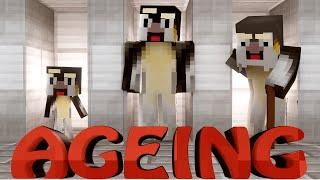 Minecraft | AGEING MOD Showcase! (Ageing, Minecraft Calendar, Hair Mod)