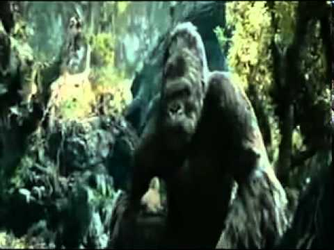 Rang Kala King Kong Remix - Cheenu Sidhwan video
