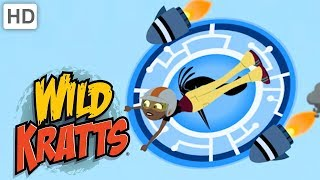 Wild Kratts ⚡🔘🌊 Creature Power Disc Ride and Activate!   Kids Videos