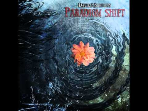 David F Burrows - Paradigm Shift Soundtrack - 01 - Blind to...